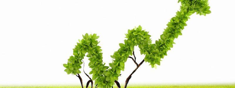 Glossario Della Finanza: I Green Bond